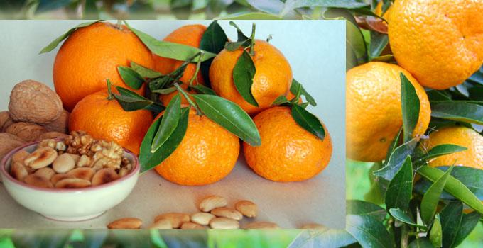 Bon-bon-con-bucce-di-mandarini-e-arance  680350