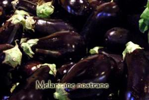 melanzane-nostrane